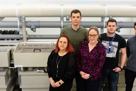 Inovacija linije omogoča širjenje spektra metaliziranih izdelkov
